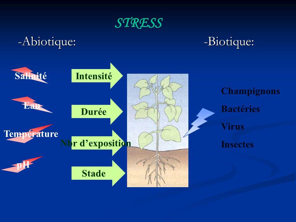 -Abiotique: -Biotique: STRESS Champignons Bactéries Virus Insectes Salinité Eau Température pH Intensité Durée Nbr dexposition Stade
