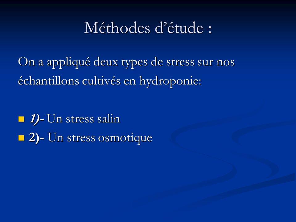 1)- Stress salin : Pour cette étude, on a utilisé les plantules, qui sont maintenue dans des pots en plastique et ont été irriguées avec une eau contenant 25mM ou 100mM.de Na Cl.
