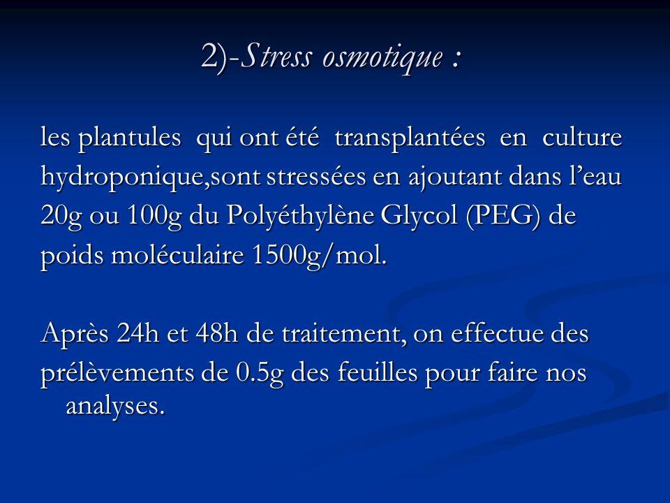 2)-Stress osmotique : les plantules qui ont été transplantées en culture hydroponique,sont stressées en ajoutant dans leau 20g ou 100g du Polyéthylène