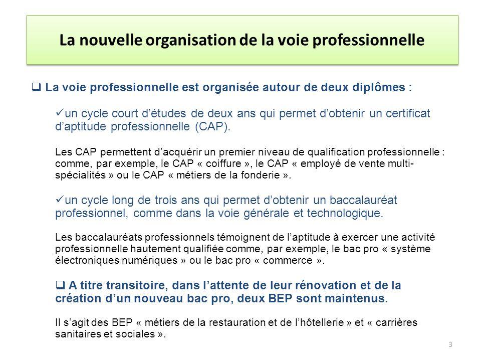 La voie professionnelle est organisée autour de deux diplômes : un cycle court détudes de deux ans qui permet dobtenir un certificat daptitude professionnelle (CAP).