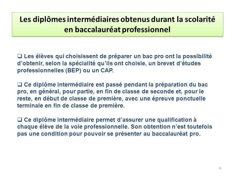 Les élèves qui ont choisi la voie professionnelle et ont opté pour une seconde professionnelle doivent choisir un diplôme de baccalauréat professionnel parmi les 77 spécialités de baccalauréats professionnels existantes.