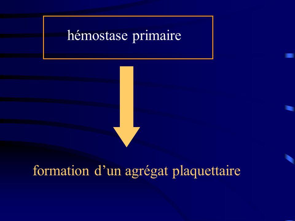 formation dun agrégat plaquettaire hémostase primaire