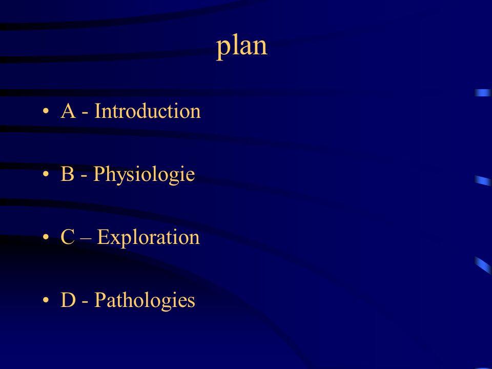 plan A - Introduction B - Physiologie C – Exploration D - Pathologies