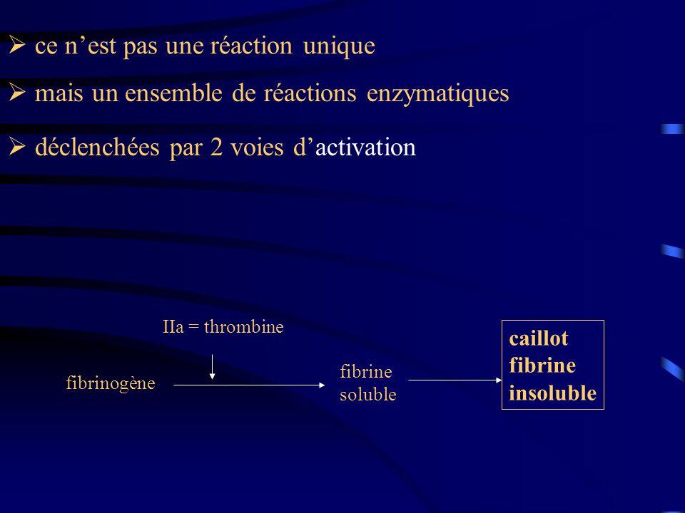 fibrinogène fibrine soluble IIa = thrombine caillot fibrine insoluble déclenchées par 2 voies dactivation mais un ensemble de réactions enzymatiques c