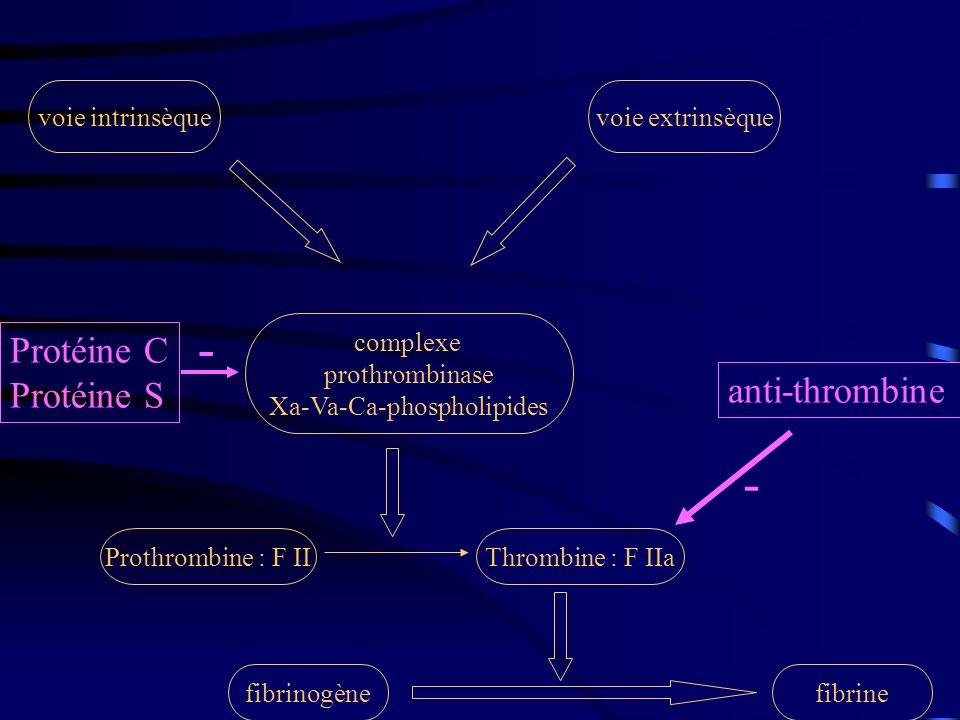 fibrinogènefibrine Thrombine : F IIaProthrombine : F II complexe prothrombinase Xa-Va-Ca-phospholipides voie extrinsèquevoie intrinsèque anti-thrombin