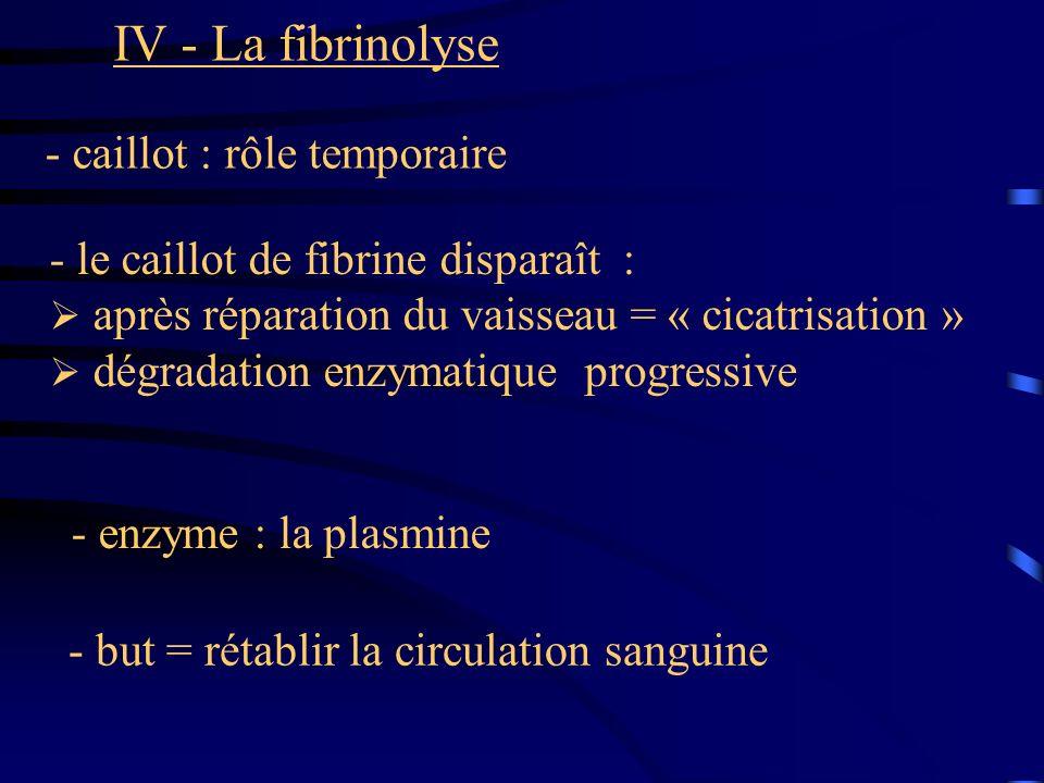 IV - La fibrinolyse - caillot : rôle temporaire - le caillot de fibrine disparaît : après réparation du vaisseau = « cicatrisation » dégradation enzym