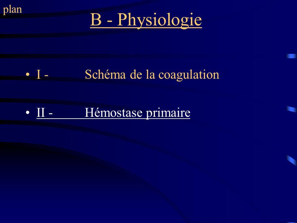 B - Physiologie I - Schéma de la coagulation II - Hémostase primaire plan
