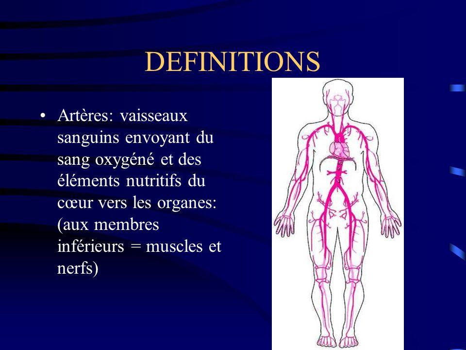 DEFINITIONS Artères: vaisseaux sanguins envoyant du sang oxygéné et des éléments nutritifs du cœur vers les organes: (aux membres inférieurs = muscles et nerfs)