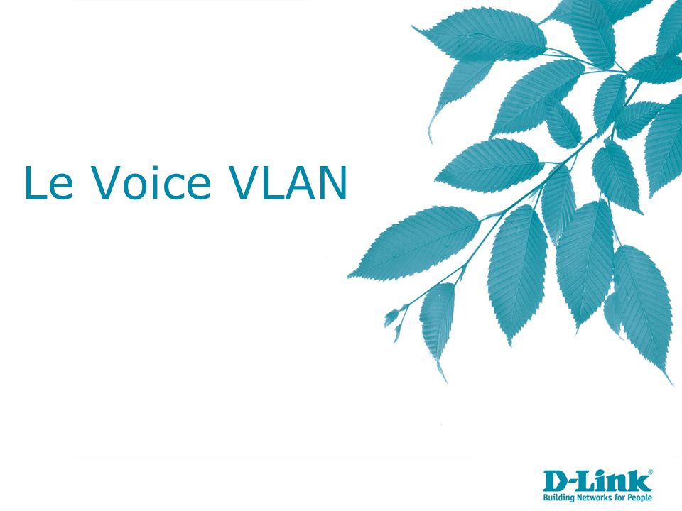Le Voice VLAN