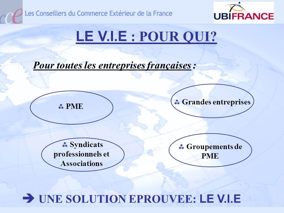 LE V.I.E : POUR QUI? Pour toutes les entreprises françaises : UNE SOLUTION EPROUVEE: LE V.I.E PME Syndicats professionnels et Associations Grandes ent