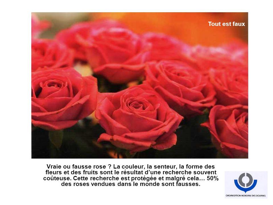 Vraie ou fausse rose ? La couleur, la senteur, la forme des fleurs et des fruits sont le résultat dune recherche souvent coûteuse. Cette recherche est
