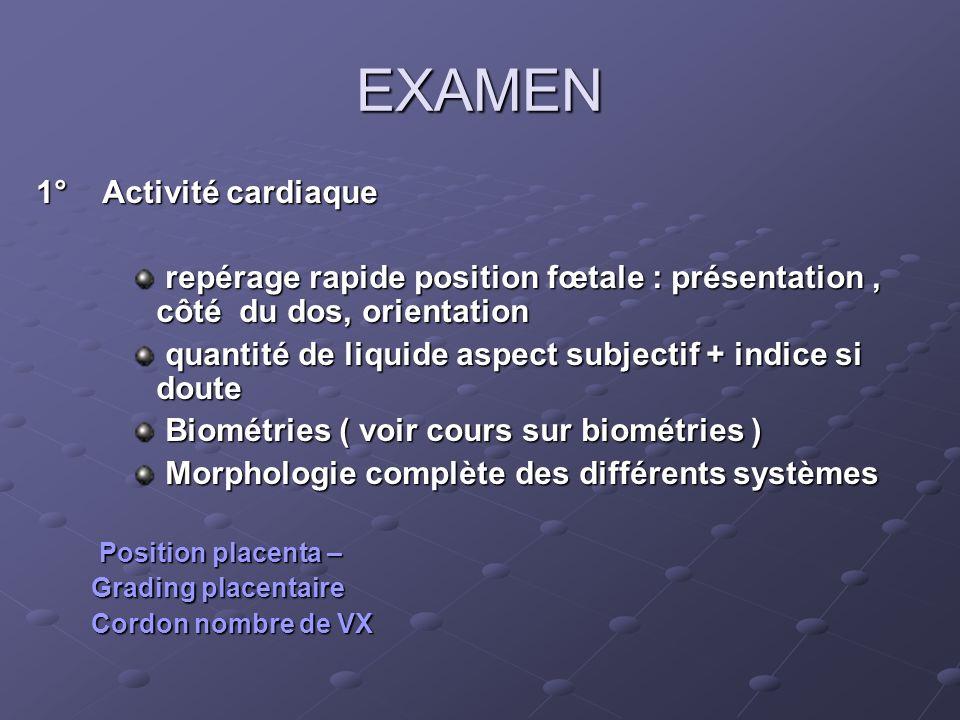 EXAMEN 1° Activité cardiaque repérage rapide position fœtale : présentation, côté du dos, orientation repérage rapide position fœtale : présentation,