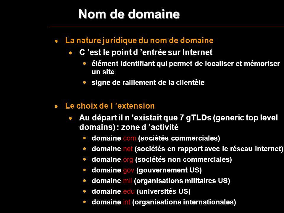 Nom de domaine La nature juridique du nom de domaine C est le point d entrée sur Internet élément identifiant qui permet de localiser et mémoriser un