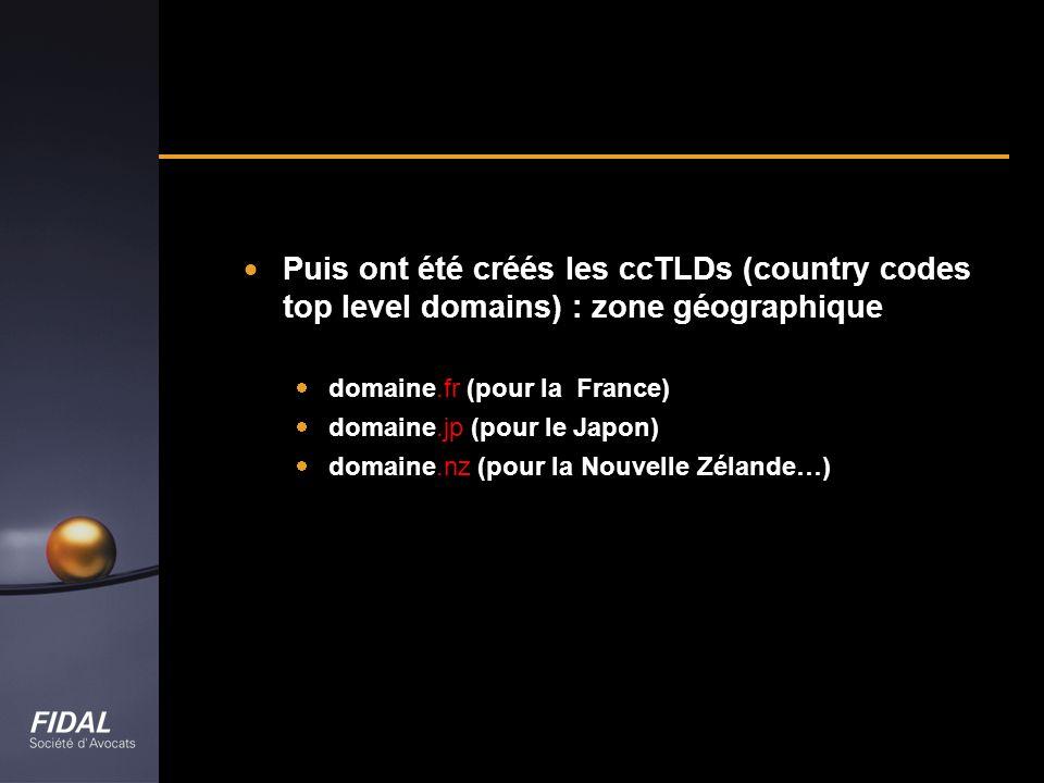 Puis ont été créés les ccTLDs (country codes top level domains) : zone géographique domaine.fr (pour la France) domaine.jp (pour le Japon) domaine.nz