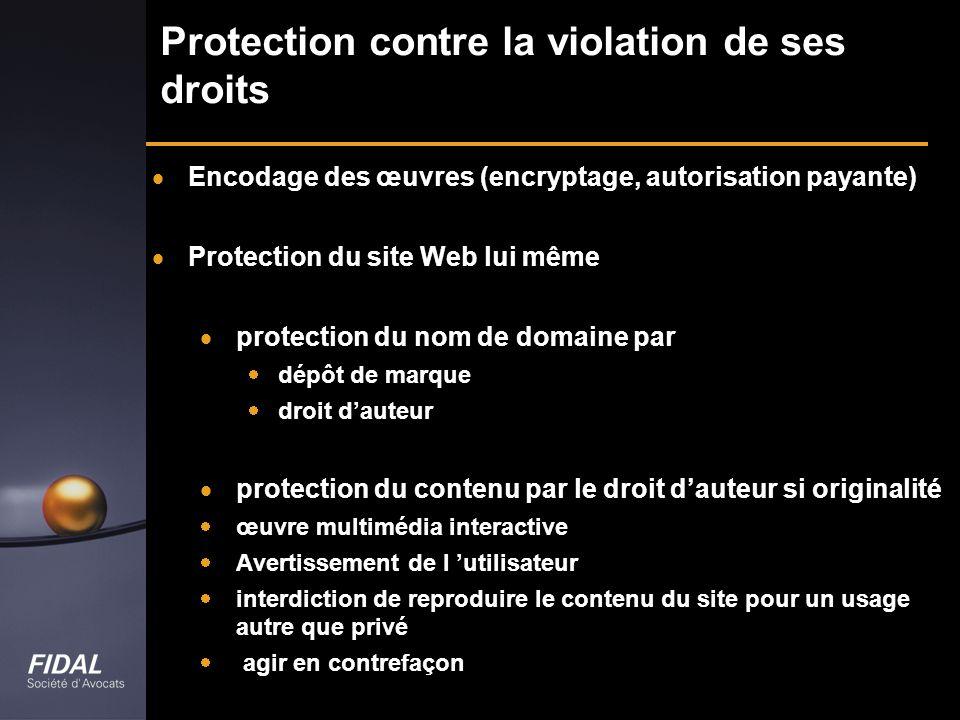Protection contre la violation de ses droits Encodage des œuvres (encryptage, autorisation payante) Protection du site Web lui même protection du nom