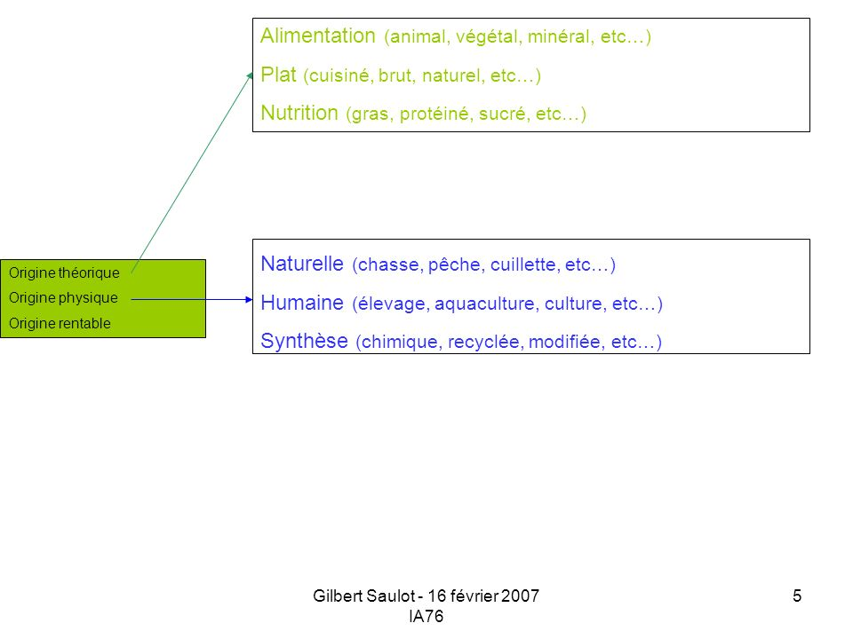 Gilbert Saulot - 16 février 2007 IA76 5 Origine théorique Origine physique Origine rentable Naturelle (chasse, pêche, cuillette, etc…) Humaine (élevag