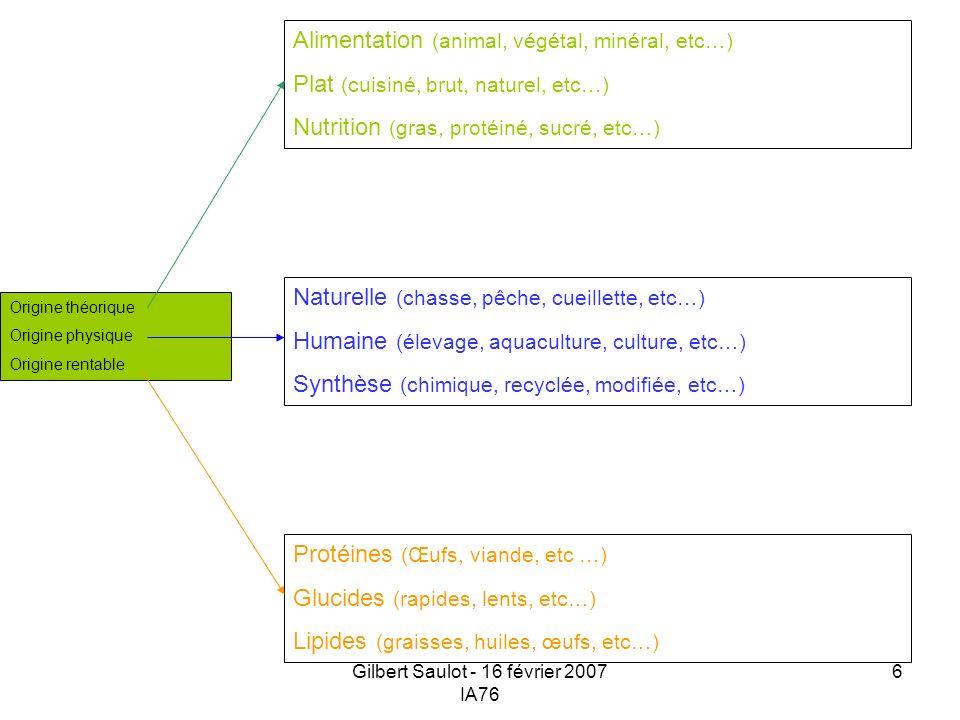 Gilbert Saulot - 16 février 2007 IA76 6 Origine théorique Origine physique Origine rentable Protéines (Œufs, viande, etc …) Glucides (rapides, lents,