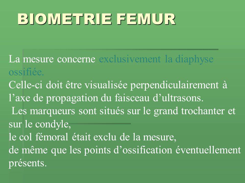 BIOMETRIE FEMUR La mesure concerne exclusivement la diaphyse ossifiée. Celle-ci doit être visualisée perpendiculairement à laxe de propagation du fais