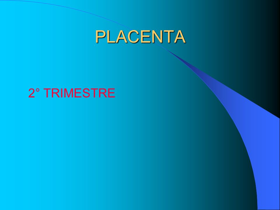 PLACENTA 3° TRIMESTRE