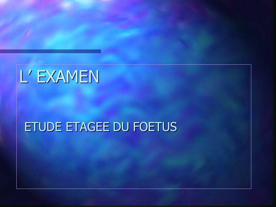 L EXAMEN ETUDE ETAGEE DU FOETUS ETUDE ETAGEE DU FOETUS