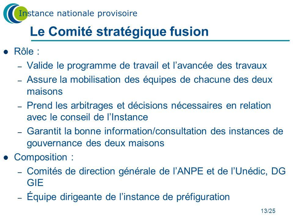 13/25 Le Comité stratégique fusion Rôle : – Valide le programme de travail et lavancée des travaux – Assure la mobilisation des équipes de chacune des