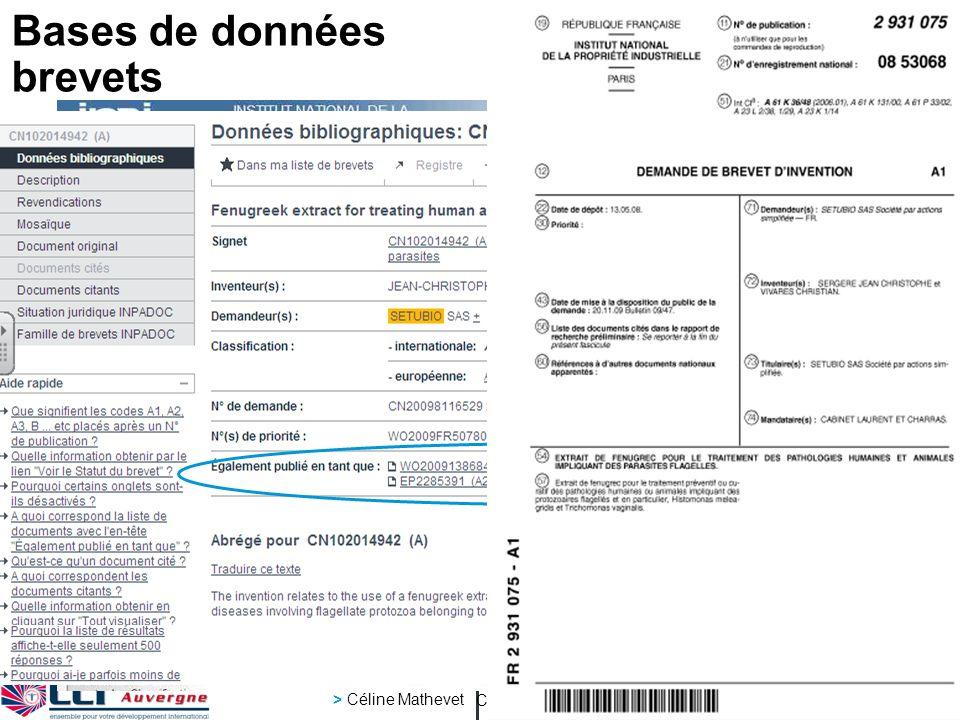 inpi Club international 26 4 2012 > Céline Mathevet page 10 Bases de données brevets Demandeur du brevet Classement CIB Mots-clés Recherche avancée Type de base Les différentes publications de linvention dans le monde