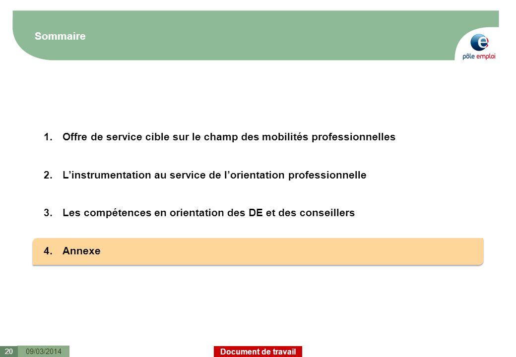 Document de travail Sommaire 09/03/201420 1.Offre de service cible sur le champ des mobilités professionnelles 2.Linstrumentation au service de lorien