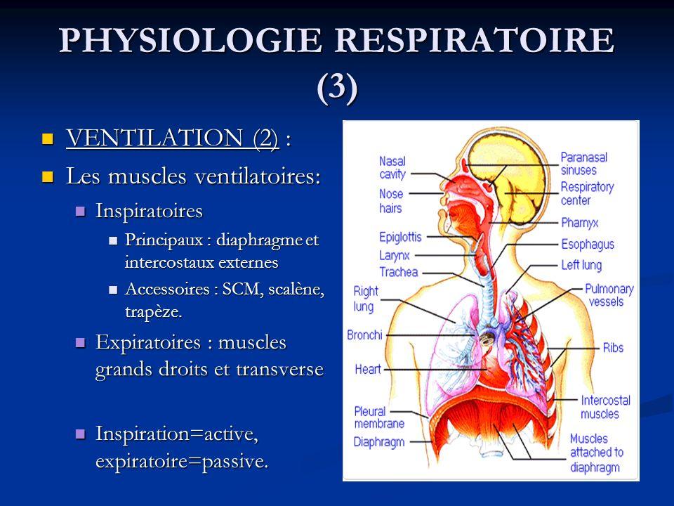 PHYSIOLOGIE RESPIRATOIRE (3) VENTILATION (2) : VENTILATION (2) : Les muscles ventilatoires: Les muscles ventilatoires: Inspiratoires Inspiratoires Pri