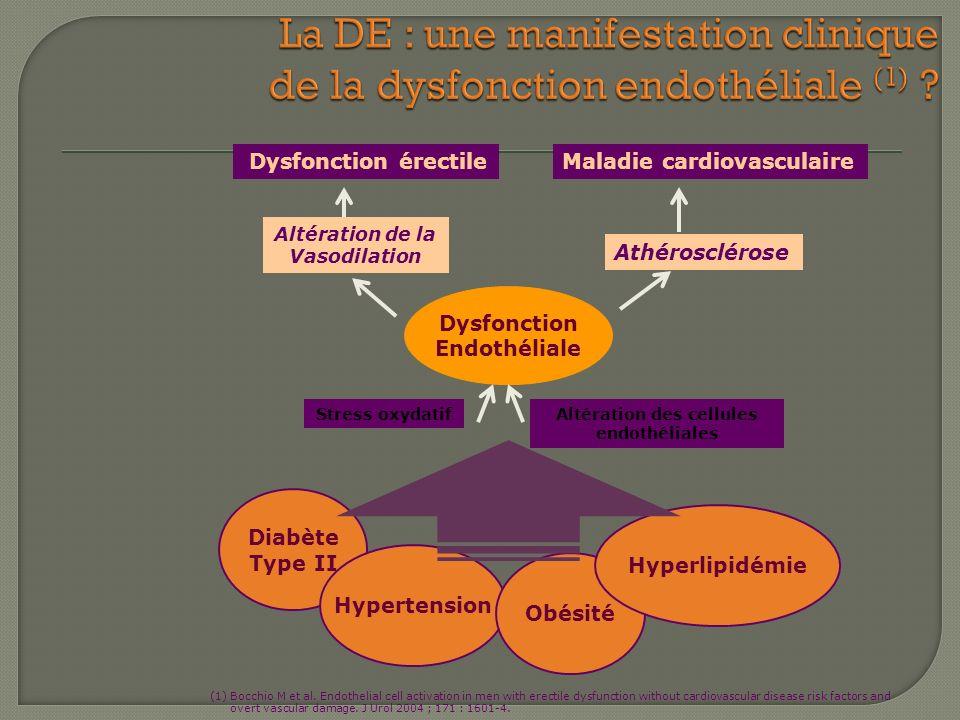 Dysfonction érectileMaladie cardiovasculaire Altération de la Vasodilation Athérosclérose Dysfonction Endothéliale Diabète Type II Hypertension Obésit