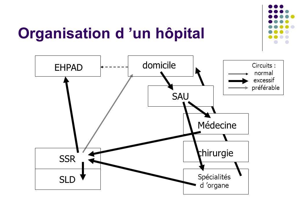 Organisation d un hôpital SLD domicile EHPAD Médecine chirurgie Spécialités d organe SSR SAU Circuits : normal excessif préférable