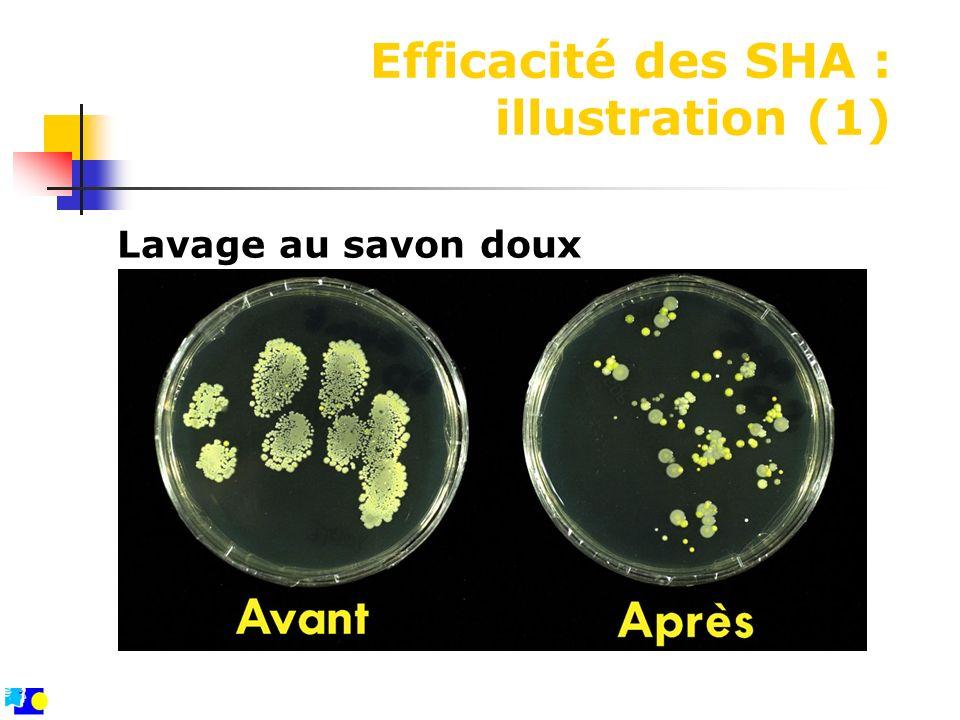 Efficacité des SHA : illustration (1) Lavage au savon doux
