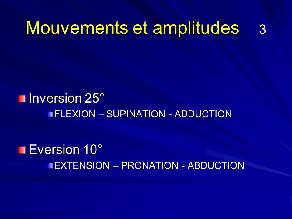 Mouvements et amplitudes 3 Inversion 25° FLEXION – SUPINATION - ADDUCTION Eversion 10° EXTENSION – PRONATION - ABDUCTION