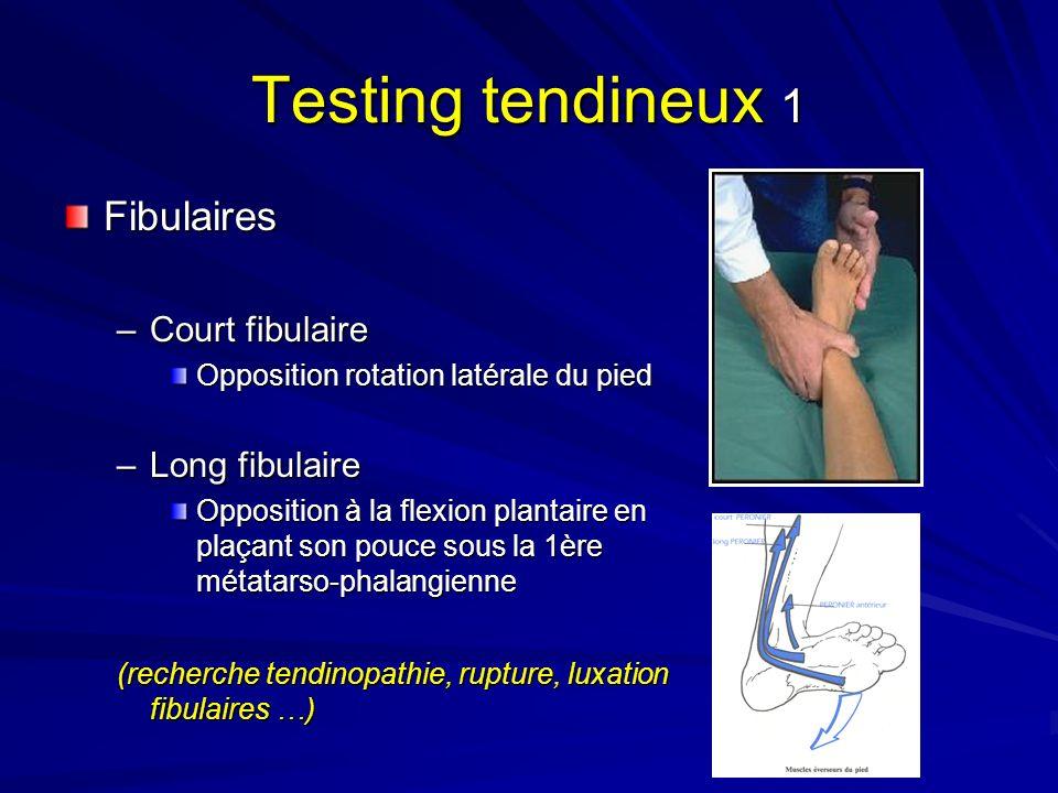 Testing tendineux 1 Fibulaires –Court fibulaire Opposition rotation latérale du pied –Long fibulaire Opposition à la flexion plantaire en plaçant son