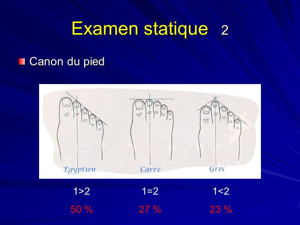Examen statique 2 Canon du pied 1>2 50 % 1=2 27 % 1<2 23 %