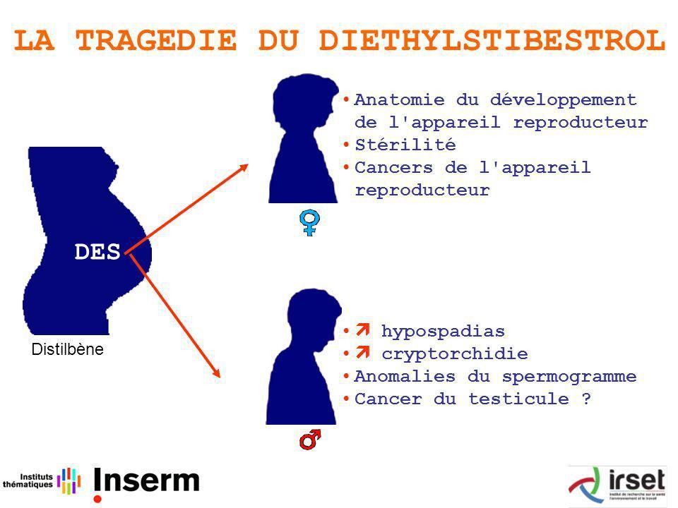 LA TRAGEDIE DU DIETHYLSTIBESTROL hypospadias cryptorchidie Anomalies du spermogramme Cancer du testicule .