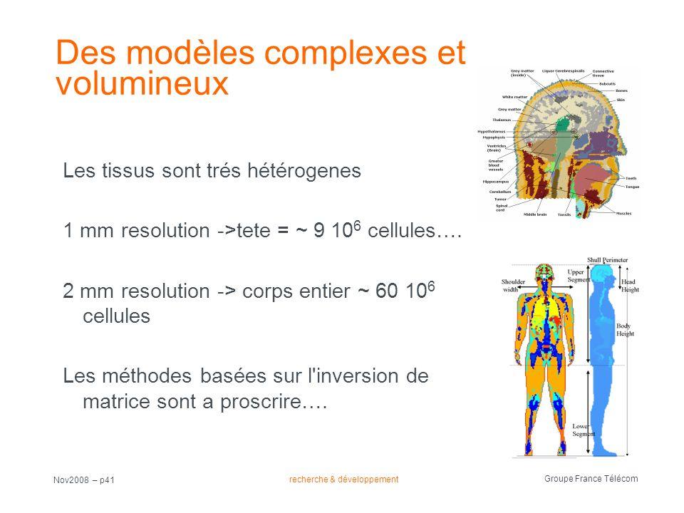 recherche & développement Groupe France Télécom Nov2008 – p41 Des modèles complexes et volumineux Les tissus sont trés hétérogenes 1 mm resolution ->t