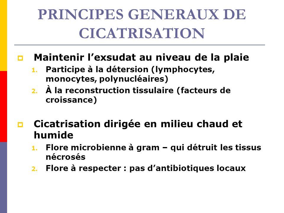PRINCIPES GENERAUX DE CICATRISATION Maintenir lexsudat au niveau de la plaie 1. Participe à la détersion (lymphocytes, monocytes, polynucléaires) 2. À