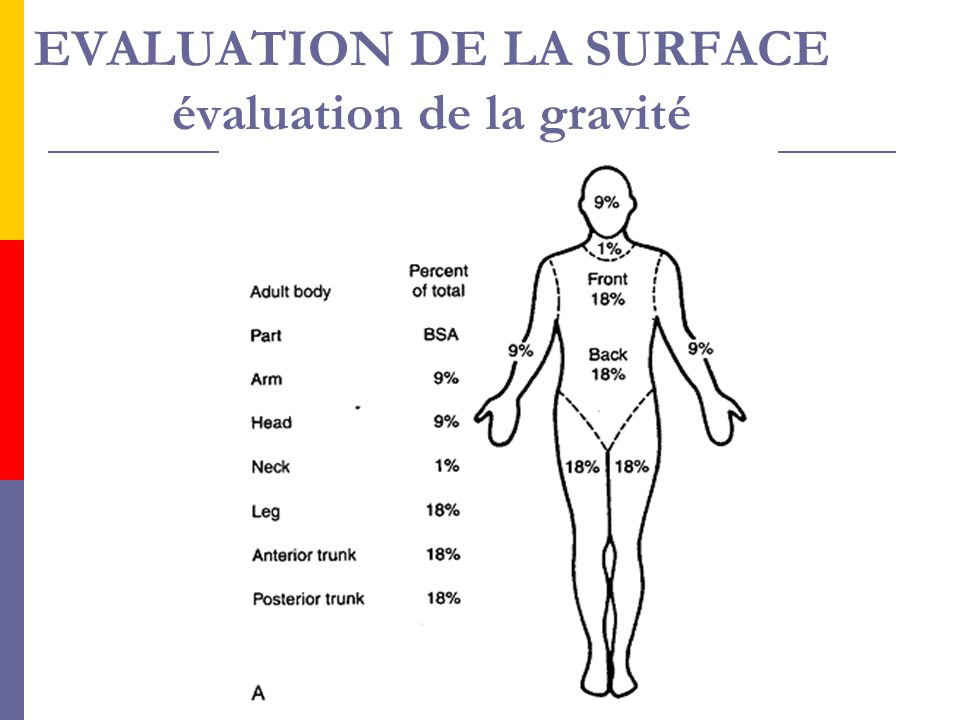 EVALUATION DE LA SURFACE évaluation de la gravité