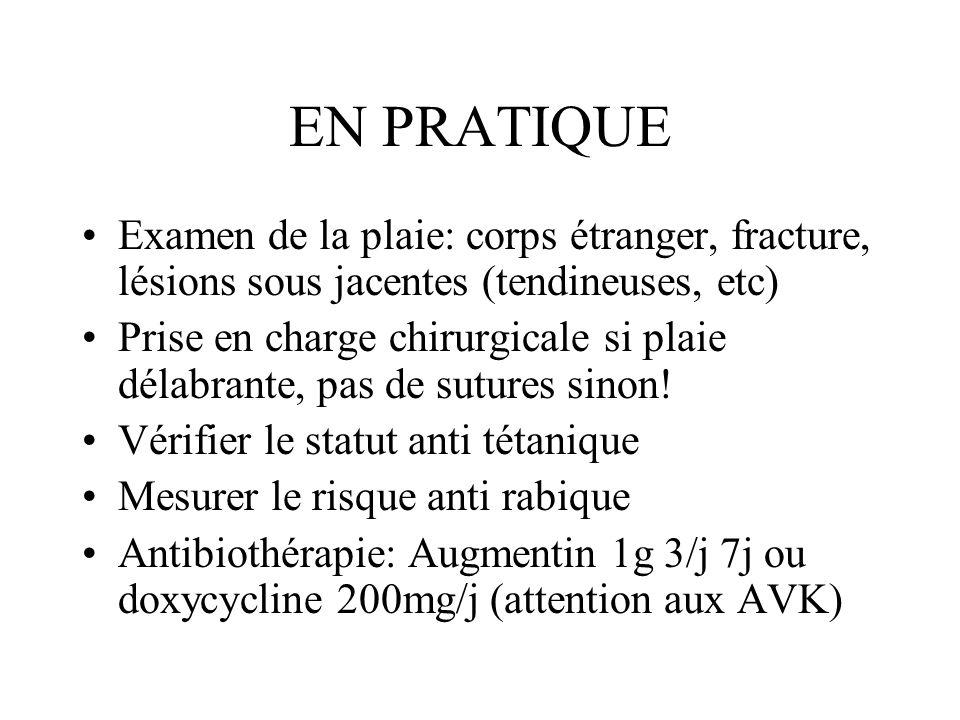EN PRATIQUE Examen de la plaie: corps étranger, fracture, lésions sous jacentes (tendineuses, etc) Prise en charge chirurgicale si plaie délabrante, p