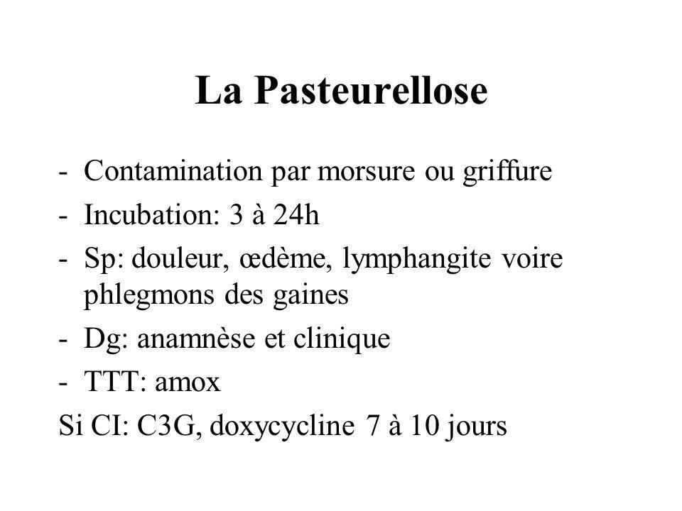 La Pasteurellose -Contamination par morsure ou griffure -Incubation: 3 à 24h -Sp: douleur, œdème, lymphangite voire phlegmons des gaines -Dg: anamnèse