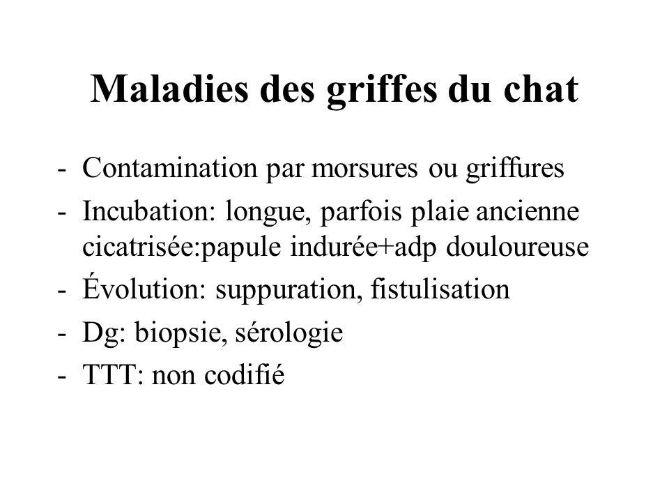Maladies des griffes du chat -Contamination par morsures ou griffures -Incubation: longue, parfois plaie ancienne cicatrisée:papule indurée+adp doulou