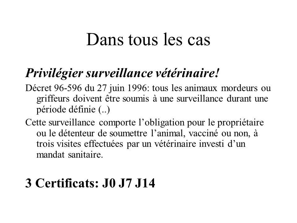 Dans tous les cas Privilégier surveillance vétérinaire! Décret 96-596 du 27 juin 1996: tous les animaux mordeurs ou griffeurs doivent être soumis à un