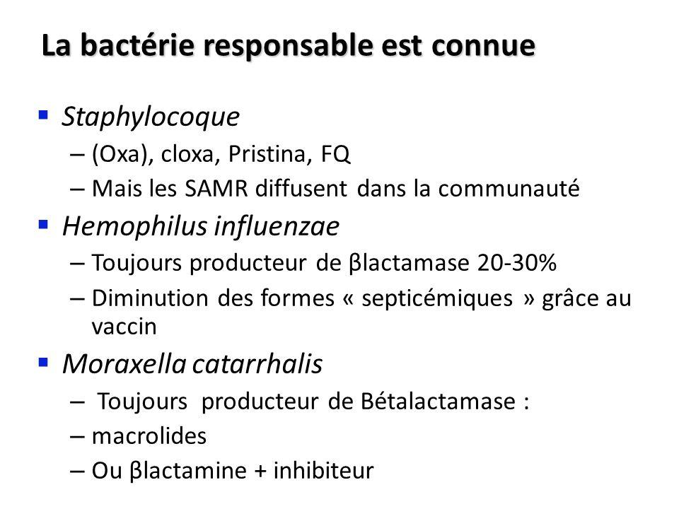 La bactérie responsable est connue Staphylocoque – (Oxa), cloxa, Pristina, FQ – Mais les SAMR diffusent dans la communauté Hemophilus influenzae – Tou