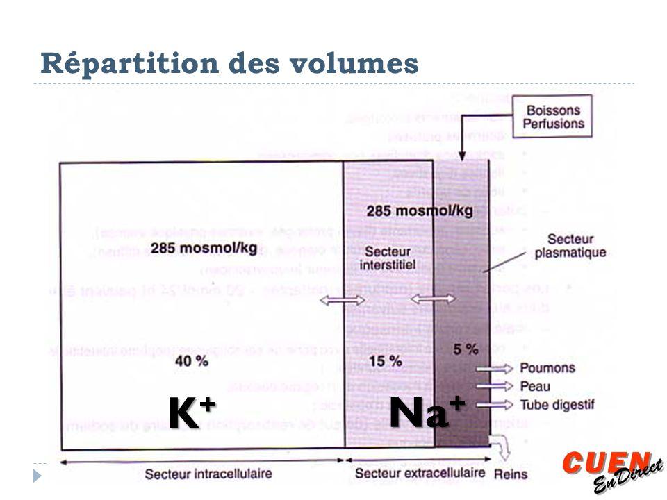 Répartition des volumes K+K+K+K+ Na +