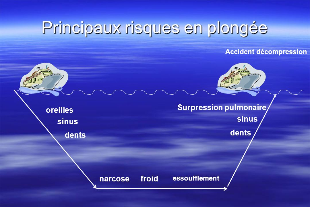 Principaux risques en plongée oreilles sinus dents froidnarcose essoufflement sinus dents Surpression pulmonaire Accident décompression