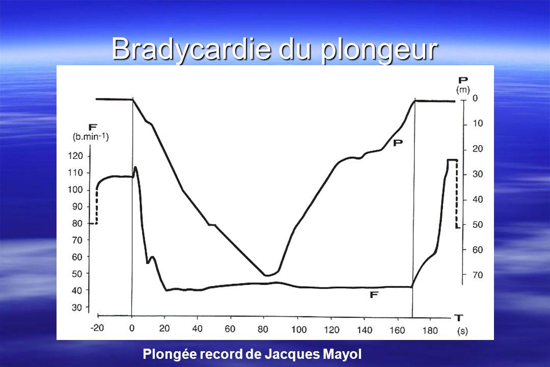 Le cœur en plongée (2) Afflux de 700cc de sang dans le thorax Afflux de 700cc de sang dans le thorax Cœur droit => déséquilibre des 2 cœurs 10-15 battements puis adaptation Cœur droit => déséquilibre des 2 cœurs 10-15 battements puis adaptation Mise à leau !!.