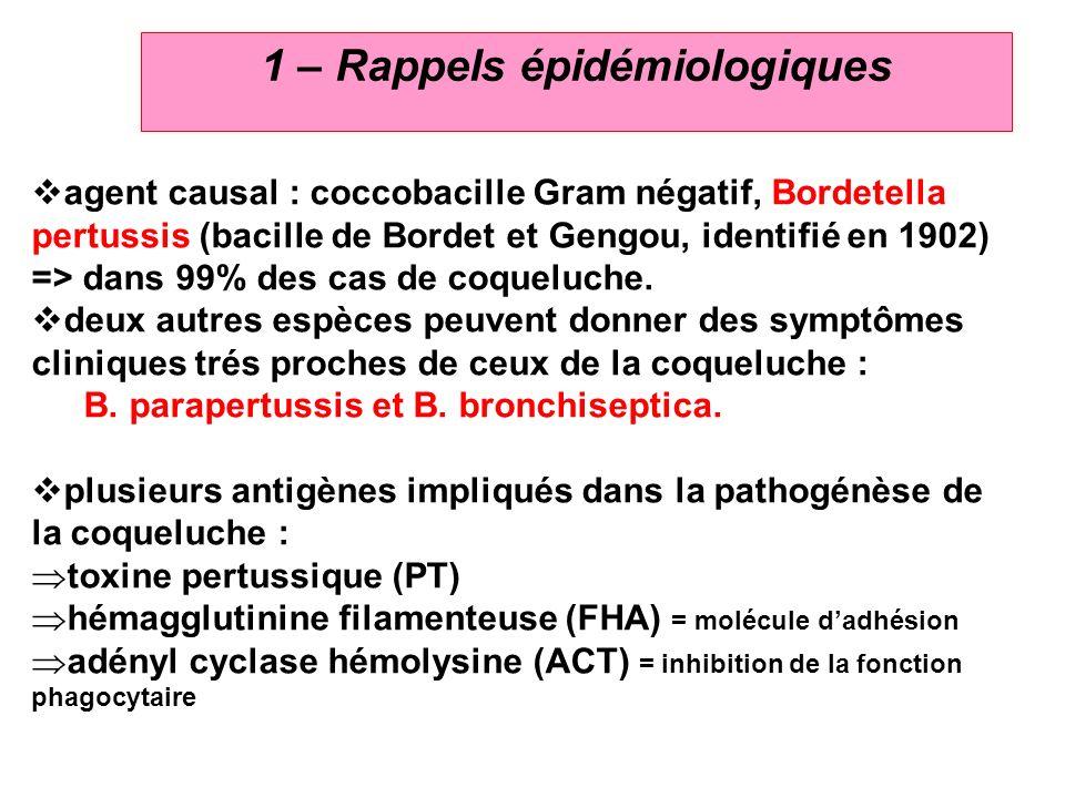 3 1 – Rappels épidémiologiques agent causal : coccobacille Gram négatif, Bordetella pertussis (bacille de Bordet et Gengou, identifié en 1902) => dans