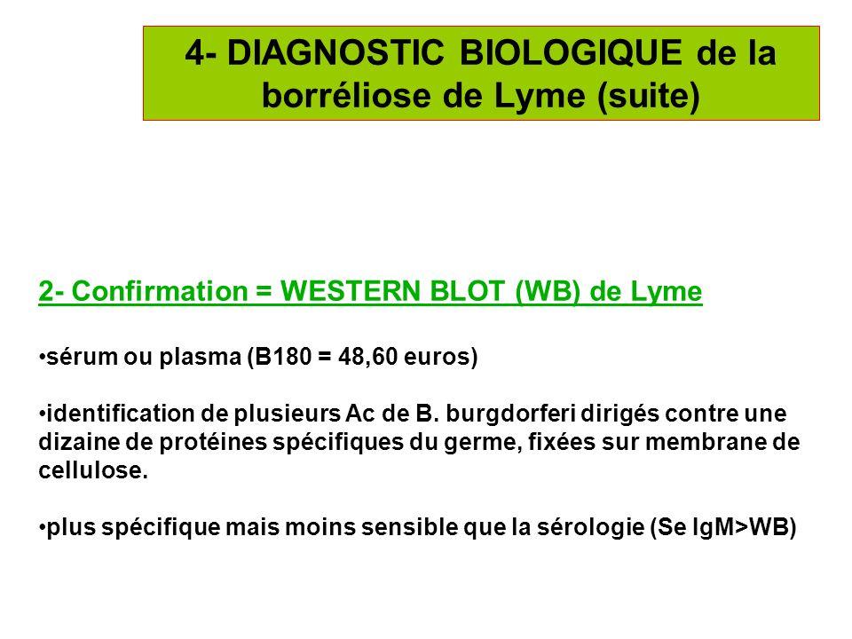 19 4- DIAGNOSTIC BIOLOGIQUE de la borréliose de Lyme (suite) 2- Confirmation = WESTERN BLOT (WB) de Lyme sérum ou plasma (B180 = 48,60 euros) identifi