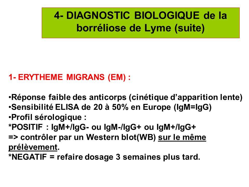 20 4- DIAGNOSTIC BIOLOGIQUE de la borréliose de Lyme (suite) 1- ERYTHEME MIGRANS (EM) : Réponse faible des anticorps (cinétique dapparition lente) Sen