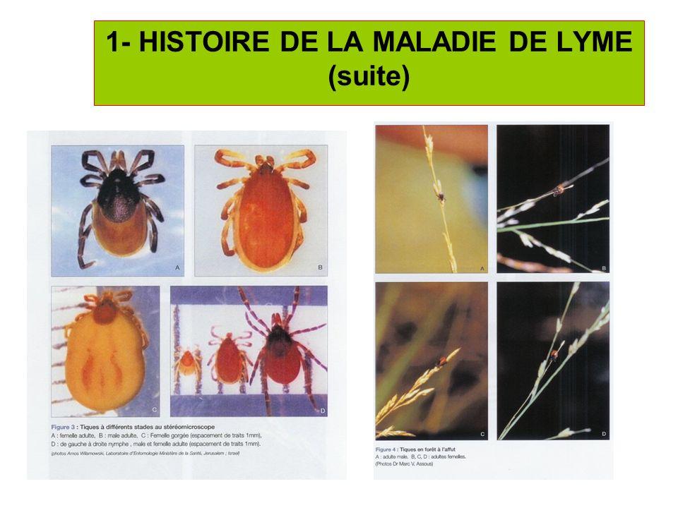6 Ixodes ricinus => bactérie spirochète Borrelia burgdorferi sensu lato (comprend 3 espèces = B.